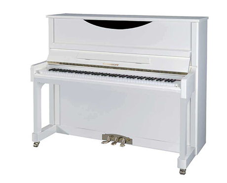 乐器租赁(钢琴)