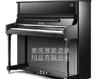 珠江纪念版   JN2